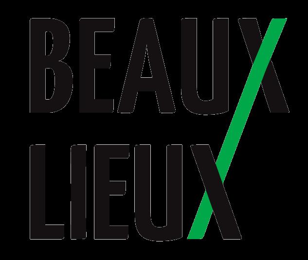 logo B2X transparentv2